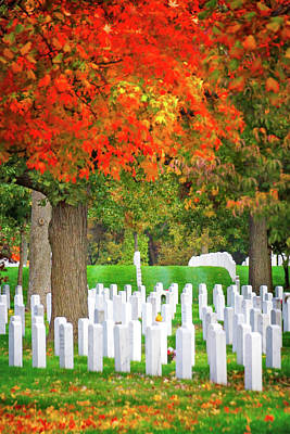 Photograph - Arlington Fall by Mark Andrew Thomas