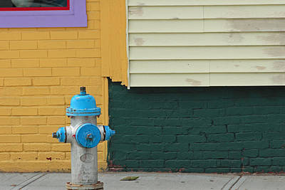 Photograph - Arlington Hydrant by Art Ferrier