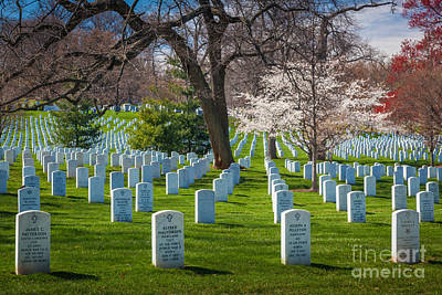 Grave Photograph - Arlington National Cemetery by Inge Johnsson