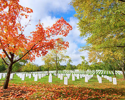 Photograph - Arlington National Cemetery Fall Colors by Mark Andrew Thomas