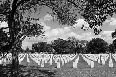 Arlington Tombstones Framed By Trees -- 2 Art Print by Cora Wandel