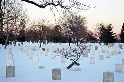 Photograph - Arlington Tombstones With Snow And Trees by Cora Wandel