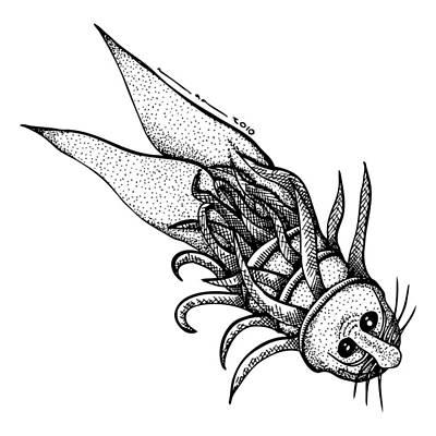 Arm Fish Art Print by Karl Addison