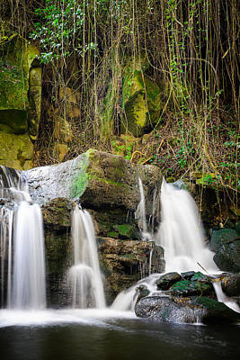 Armes Waterfall II Art Print by Marco Oliveira