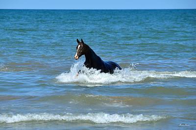 Equine Photograph - Armiya by Artur Baboev