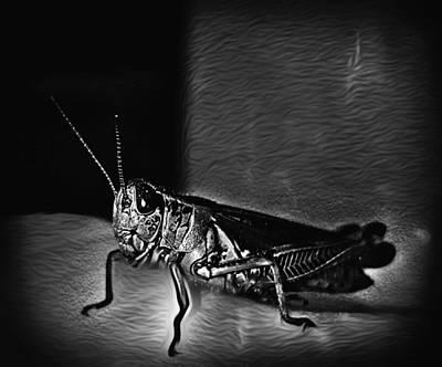 Grasshopper Mixed Media - Armored  by Jenn Teel