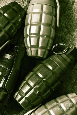Metal Wall Photograph - Army Green Grenades by Jorgo Photography - Wall Art Gallery