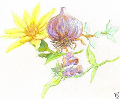 Arnica Garlic Thyme And Comfrey Art Print by Cameron Hampton PSA