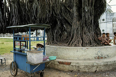 Photograph - Around The Banyan Tree by Robert Holden