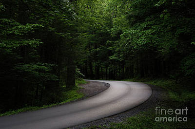 Photograph - Around The Bend by Andrea Silies