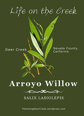 Digital Art - Arroyo Willow - Color by Lisa Redfern
