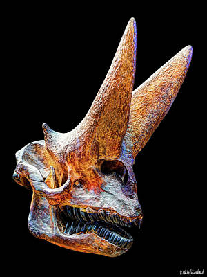 Photograph - Arsinoitherium Zitteli by Weston Westmoreland