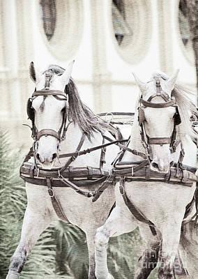 Art Ancient Potrait Of Wonderful Carriage White Horses In Moveme Art Print by Natalie Anakonda