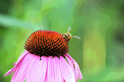 Digital Art - Art Bee by David Stasiak