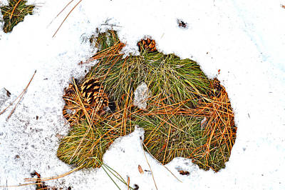 Mauverneen Blevins Photograph - Art By Mother Nature by Mauverneen Blevins