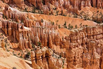 Photograph - Art By Nature, Bryce Canyon by Peggy Hughes