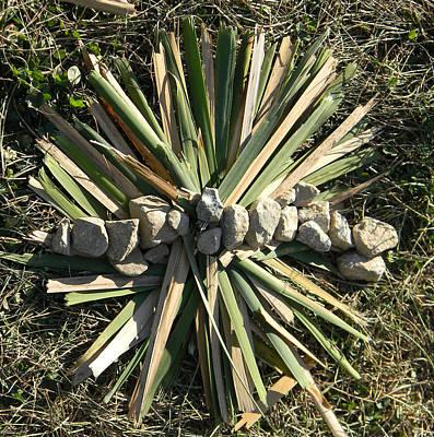 Creative Renewal Sculpture - Art In Nature  by David  Maynard