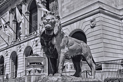 Photograph - Art Institude Of Chicago Lion - Northside - B And W    by Allen Beatty