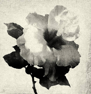 Timeless Mixed Media - Art Is The Hibiscus -black And White by Stacey Chiew