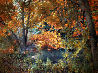 Water Fowl Photograph - Art Of Autumn by Jessica Jenney