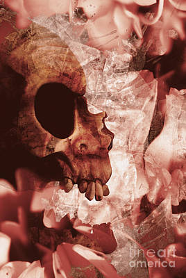 Art Of Love And Death Print by Jorgo Photography - Wall Art Gallery