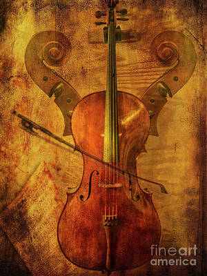 Photograph - Art Of The Cello by John Anderson