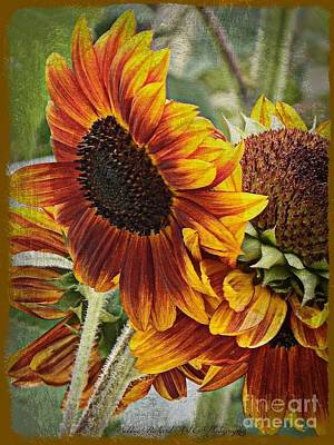 Photograph - Art Of The Sunflower Painting by Bobbee Rickard