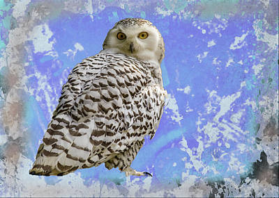 Digital Art - Art Portrait Of Snowy White Owl by Rusty R Smith