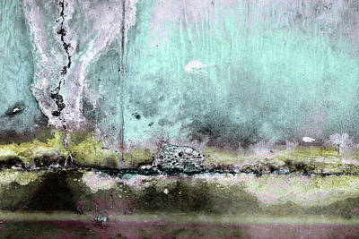 Photograph - Art Print Patina 19 by Harry Gruenert