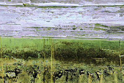 Photograph - Art Print Patina 33 by Harry Gruenert