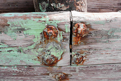 Photograph - Art Print Patina 40 by Harry Gruenert