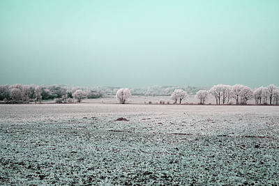 Photograph - Art Print Winterland 03 by Harry Gruenert