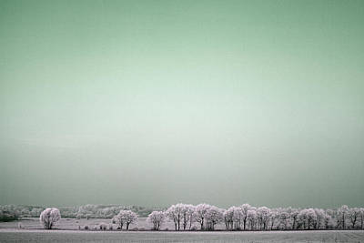 Photograph - Art Print Winterland 04 by Harry Gruenert