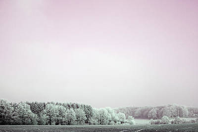 Photograph - Art Print Winterland 05 by Harry Gruenert