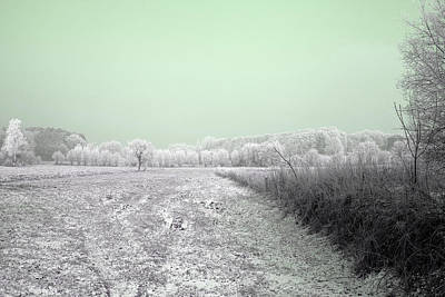 Photograph - Art Print Winterland 06 by Harry Gruenert
