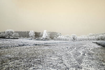 Photograph - Art Print Winterland 07 by Harry Gruenert