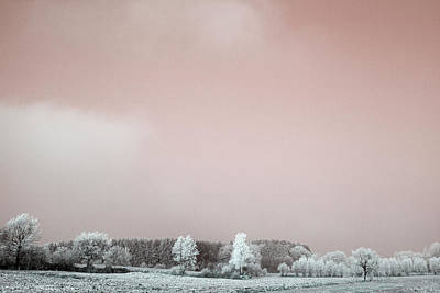 Photograph - Art Print Winterland 09 by Harry Gruenert