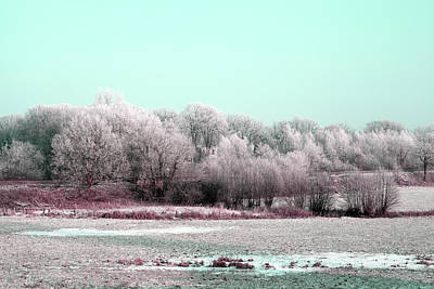 Photograph - Art Print Winterland 12 by Harry Gruenert