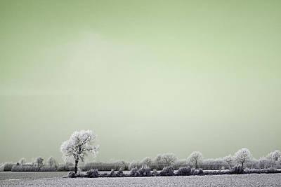 Photograph - Art Print Winterland 16 by Harry Gruenert