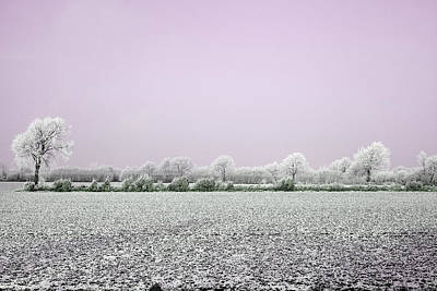 Photograph - Art Print Winterland 18 by Harry Gruenert