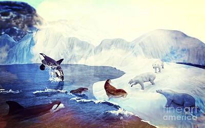 Orca Digital Art - Artic Morning by Methune Hively