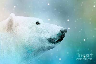 Digital Art - Artic Polar Bear by Janette Boyd