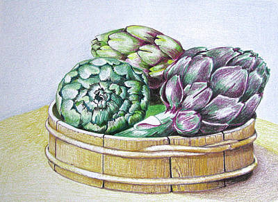 Artichoke Drawing - Artichoke Basket by Linda Williams
