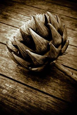Print featuring the photograph Artichoke Flower Still Life by Frank Tschakert