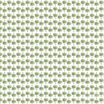 Artichoke Digital Art - Artichokes by Richard Wareham