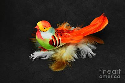 Photograph - Artificial Orange Bird by Nika Lerman