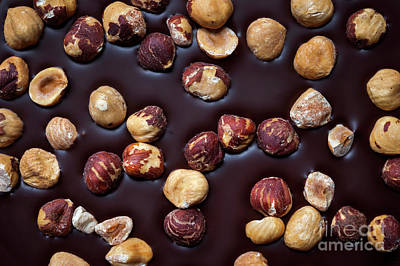Photograph - Artisanal Chocolate Closeup by Elena Elisseeva