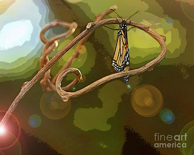 Photograph - Artistic Butterfly On Stick by Luana K Perez