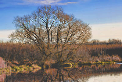 Artistic Creek Tree  Art Print by Leif Sohlman