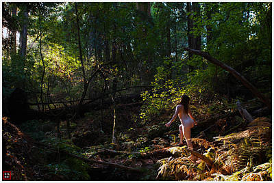 Outdoor Nude Photograph - Artistic Female Nude In Nature #14 by Catherine Lau